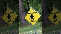bigfoot x.jpg