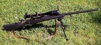 Savage 110 SS .22.250 Leupold 20x.JPG