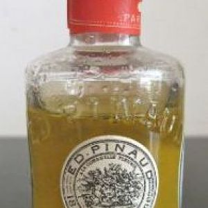 My Vintage Bottle of Pinuad Hair Tonic